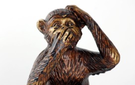 monkey-987886_1920.jpg