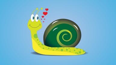 snail-2644289_1920.jpg