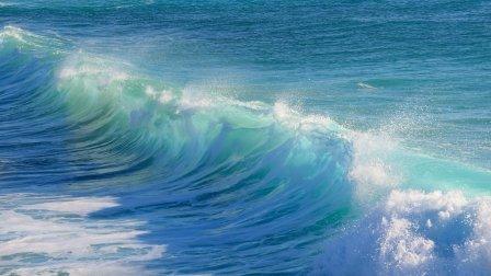 surf-3104869_1920.jpg